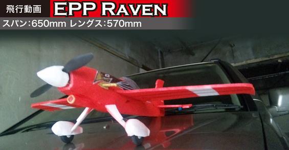 00000EPP RAVEN-01.jpg