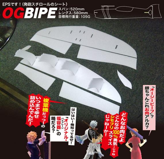 BIPE-01.jpg