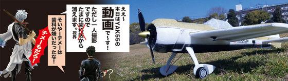 YAK55-D-01.jpg