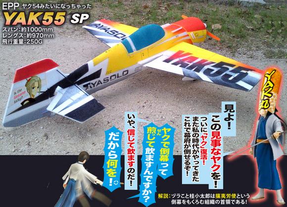 YAK55SP-01.jpg