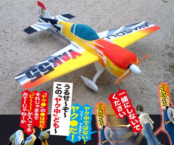 YAK55SP-02.jpg